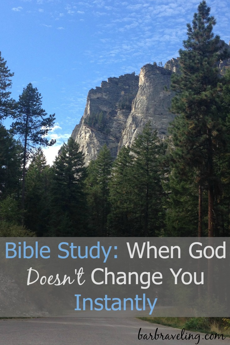 Sometimes God changes us instantly, but not usually! This Bible study explores our role in the transformation process.