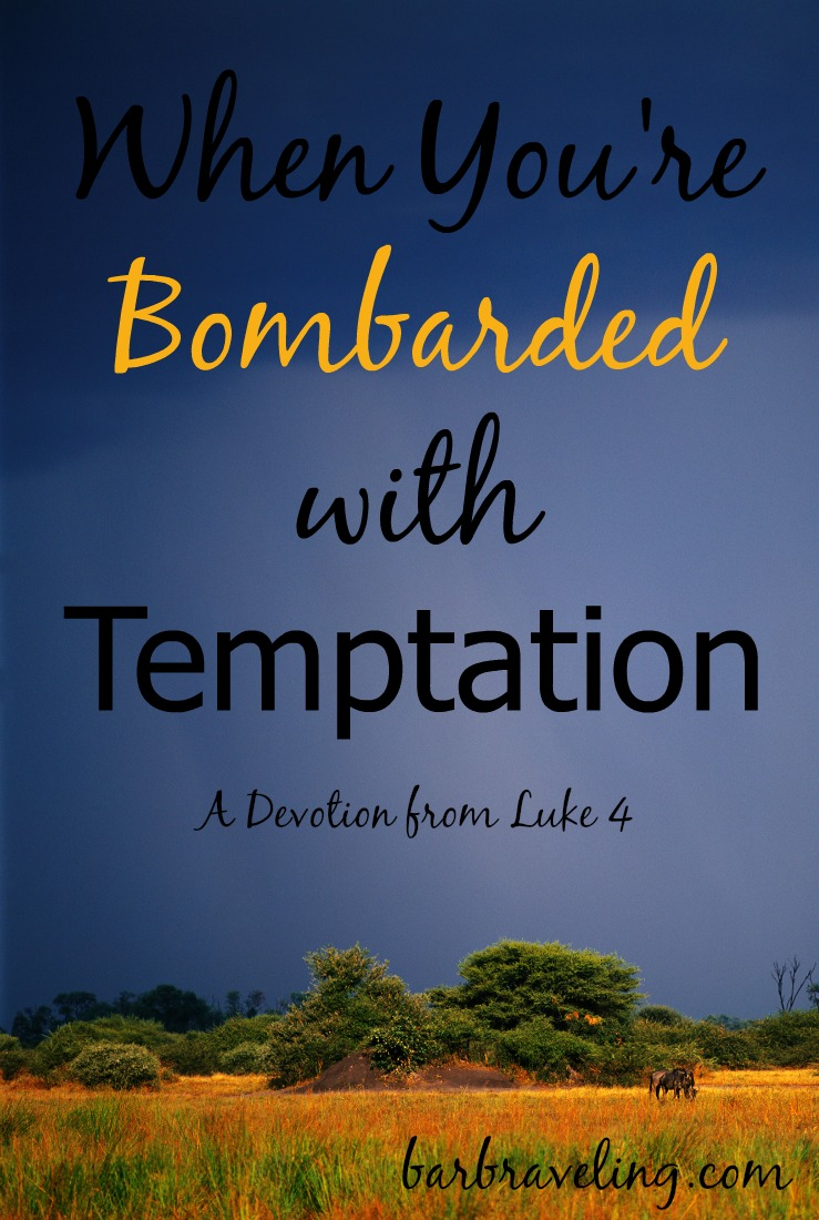 Do you ever feel like you're constantly bombarded with temptation? If so, this short devotional will help.
