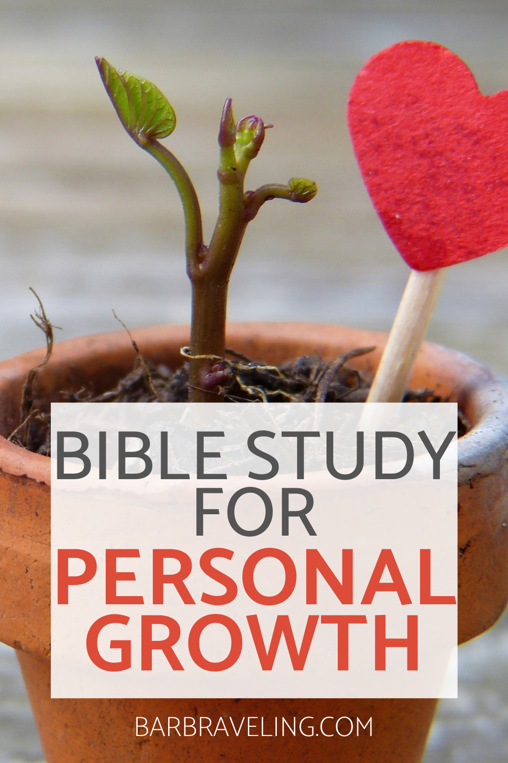 Do you ever feel like you want to grow as a Christian, but you don't see it happening? In this personal growth Bible study, we'll look at how to pursue growth and receive the fruit of the Spirit (love, joy, peace, etc.) in the process!