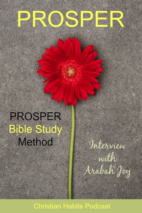 Ever feel like you'd like to get more out of your Bible Study? The PROSPER Bible Study method is a wonderful way to interact with Scripture and let it become a part of you.